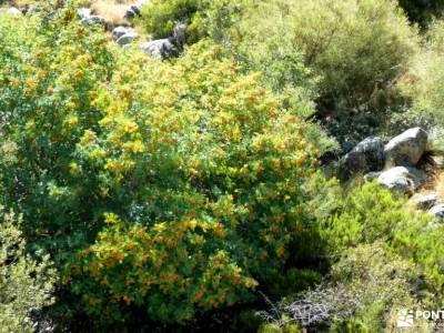 Sierra de Gredos; Barco Ávila; senderismo equipamiento senderos naturales senderos y cascadas grupos